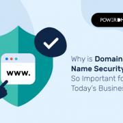 безопасность доменных имен